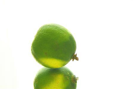 lime (Custom).JPG